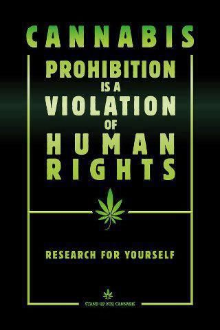 #Cannabis prohibition is a violation of human rights   Anonymous ART of Revolution