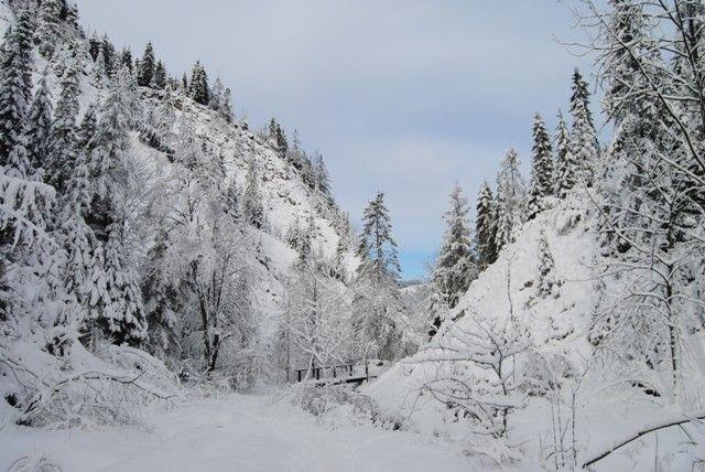 Zimą też warto iść w góry :) #Szczawnica #Jaworki #Wąwóz #Homole #wycieczki #góry #zima