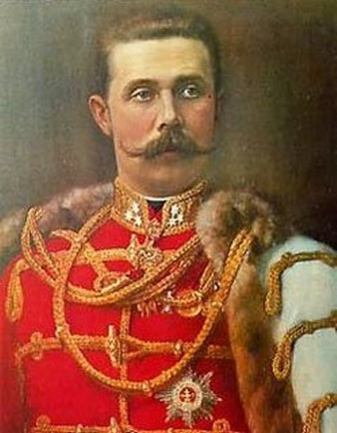 a history of the assassination of the archduke francis ferdinand The assassination of archduke franz ferdinand  history: 20th century  this lesson will give students the details of archduke franz ferdinand's death and what.