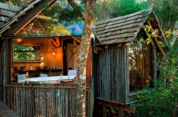 Phantom Forest eco lodge, Knysna, South Africa.