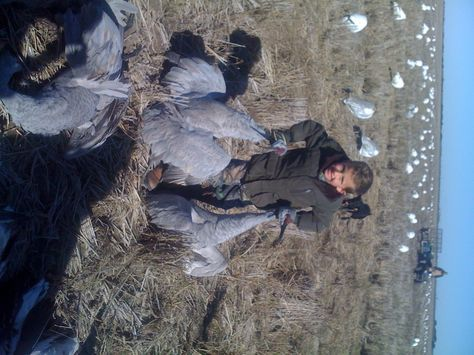 Sandhill Crane Recipe   LeaseHunter.com   Hunting leases in Texas, the US and throughout the world.