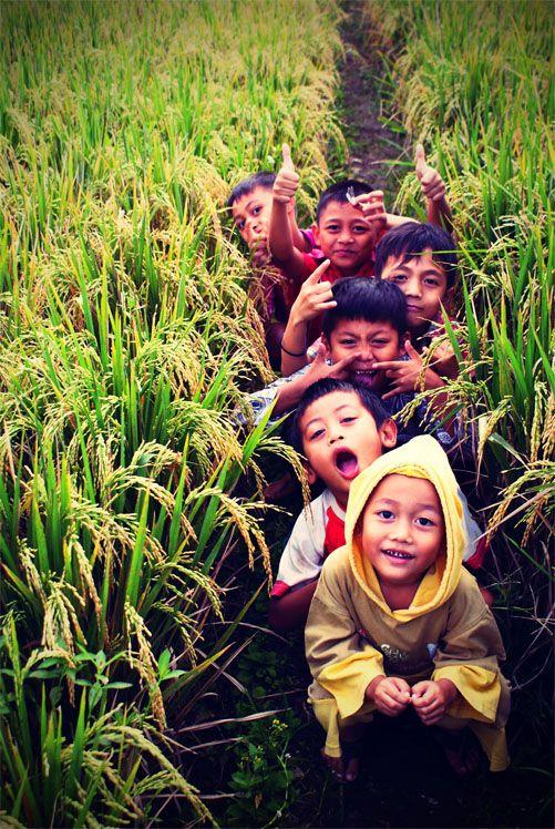children of ricefield by ~bumikuhijau on deviantART