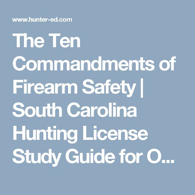 The Ten Commandments of Firearm Safety   South Carolina Hunting License Study Guide for Online Hunting Safety Course