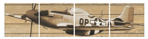 "17""x17"" P-51 mustang canvas airplane panels."