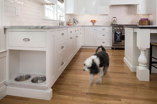 kitchen built in dog bowl storage