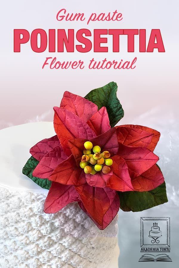 Poinsettia Flower Akademiatortu Pl Sugar Flowers Tutorial Poinsettia Flower Poinsettia