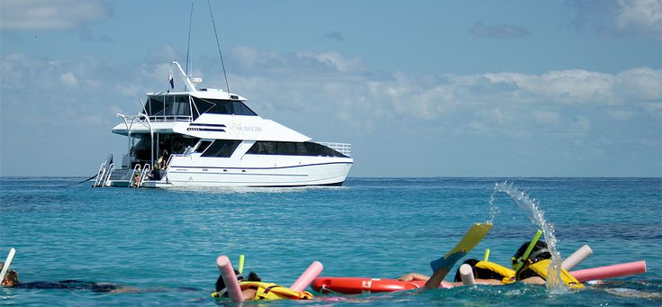 Sea Star Cruises tours from from $190 Call Us 1300 731 620 In only 1¼ hours the fast air-conditioned #Seastar 1 can take you from #Cairns to magnificent #Michaelmas Cay, the largest of the local uninhabited coral cays. #CairnsTour