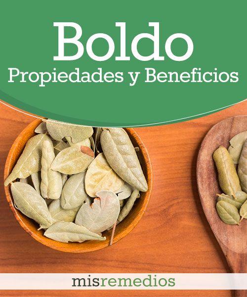 #Boldo - Propiedades y Beneficios #PlantasMedicinales