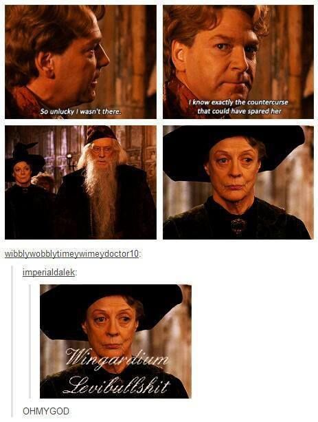 hahahahaha. Professor McGonagal will always be one of my favorite characters in the series.
