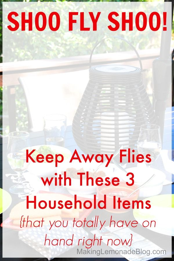 Amazing Trick for Repelling Flies at your next outdoor picnic or party using just THREE common household items! via makinglemonadeblog.com