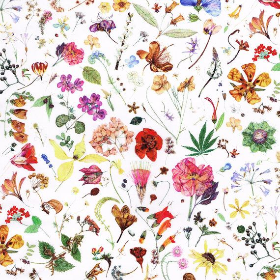 Liberty Fabric Floral Eve D Tana Lawn One by Alicecarolinesupply