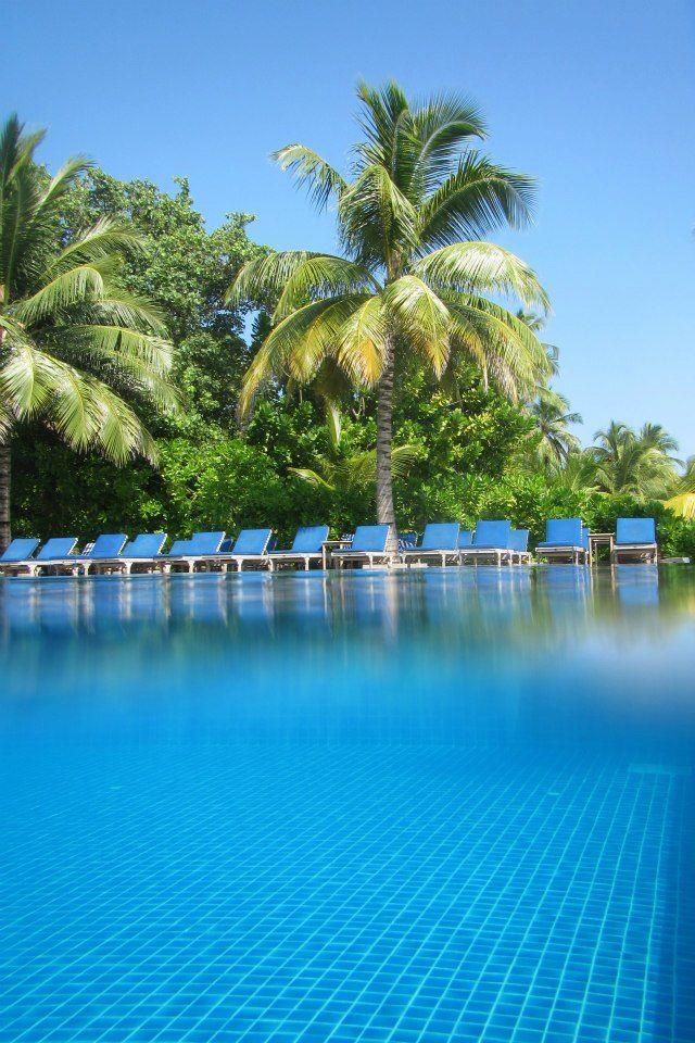 Zwembad, meeru, swimmingpool