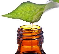 Essential oils are extracted from many different plant sources and have been used for thousands of years for various purposes.  If you plan to consume an essential oil you have to make sure that it is the highest quality of the oil and the bottle should specify that can be taken ingested.