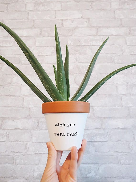 Indoor Planter, Mothers Day, Grandmother, Under 20, Gift Wife, Gift Mom, Aloe You Vera Much, Mother Present, Planter, Small Planter, pottery