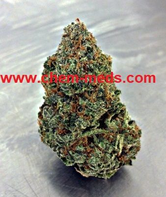 Buy Cherry Pie Marijuana Online. Buy Marijuana Online   Buy Weed   Kush   THC and CBD Oil  Cannabis, Weed, Oil, THC, CBD, Wax, Edibles, Concentrates... Sale.  Call or Text: +1(214)210 9551 Contact us now: www.chem-meds.com
