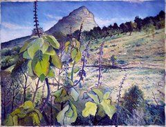 Enver Larney - Lions Head from Signal...