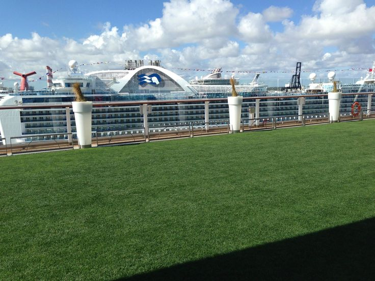 how to come a cruise travel agent