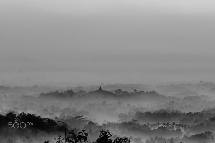 Misty morning - Misty morning of Borobudur temple, one of the largest Buddhist temple. Taken from location called Puthuk Setumbu, where people usually wants to see sunrise and morning mist surrounded Borobudur temple, Magelang, Central Java, Indonesia