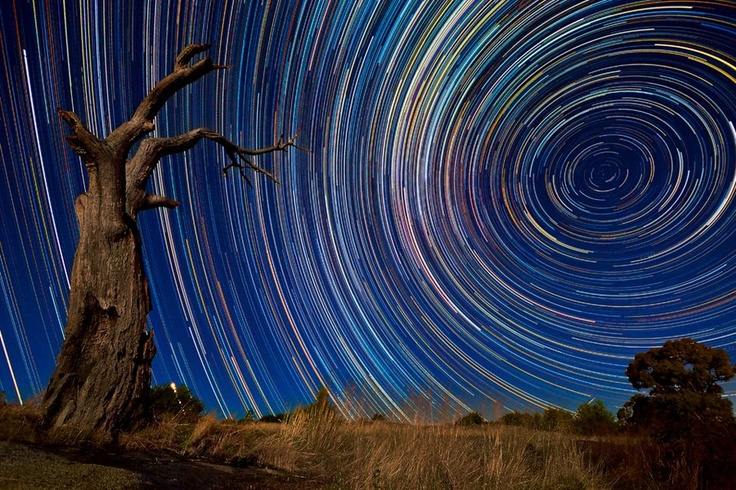 Dead Tree Stars    Foreground 1 x 120sec, f4, ISO400, lit by moonlight.    Startrails 300 x 60sec, f4, ISO400, after moonset.    Camera Nikon ~ D3100    Focal Length ~ 10mm    Shutter Speed ~ 59 sec    Aperture ~ f/4    ISO/Film ~ 400    Category ~ Milky way scientists Landscapes      Taken ~ January 15th 2011  Copyright Lincoln Harrison