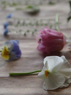 parizankounavikend: Sušenie kvetov