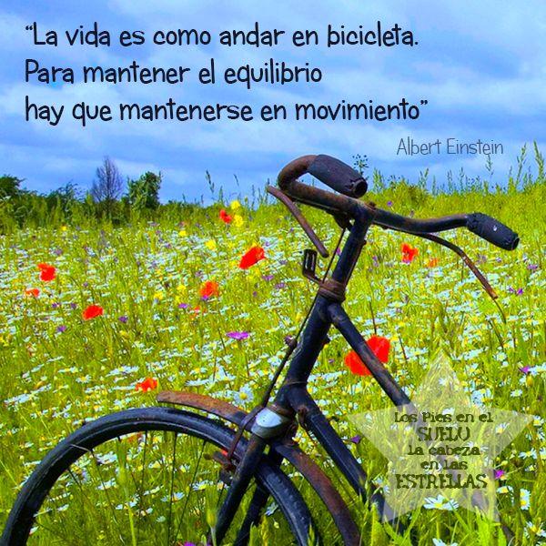 La vida es como andar en bicicleta. Para mantener el equilibrio hay que mantenerse en movimiento. Albert Einstein.