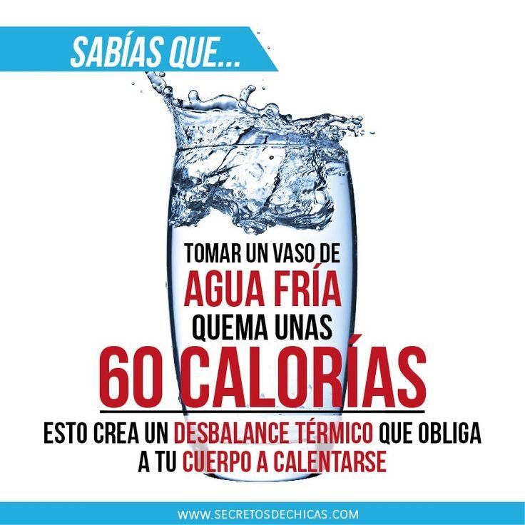 ¿Sabías que tomar un vaso de agua fría quema unas 60 calorías?