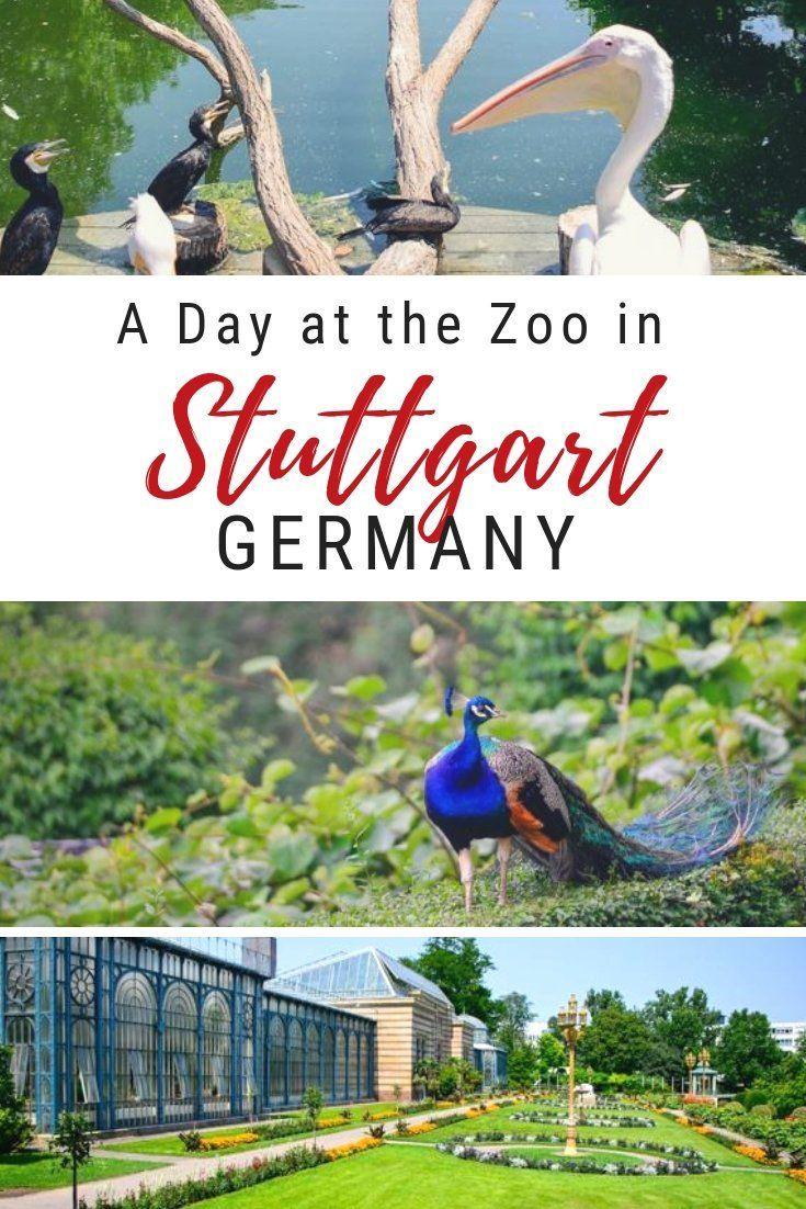 The Wilhelma Zoologisch Botanischer Garten In Stuttgart Germany Is A Beautiful Zoo And Garden That Is Fun For The Whole Famil Germany Travel Germany Stuttgart