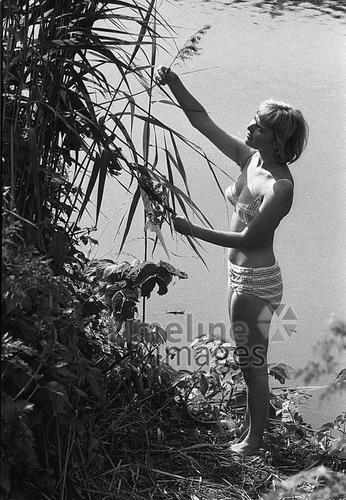 Badenixe am Isarstrand leicar6/Timeline Images #1964 #Isar #Model #Bademode #Fashion #Baden #Bikini #Retro