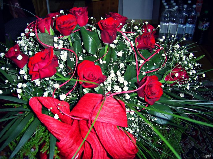 Beautiful roses <3 # red #roses