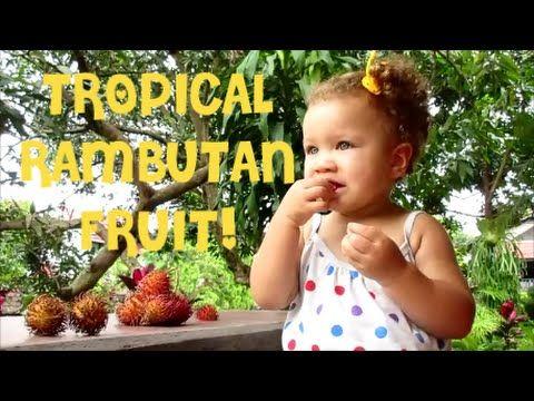 RAMBUTAN FRUIT SEASON!!!-This Fresh Family Daily International Vlogs-
