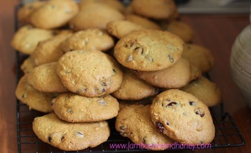 Coconut, Cranberry & Choc Chip cookies