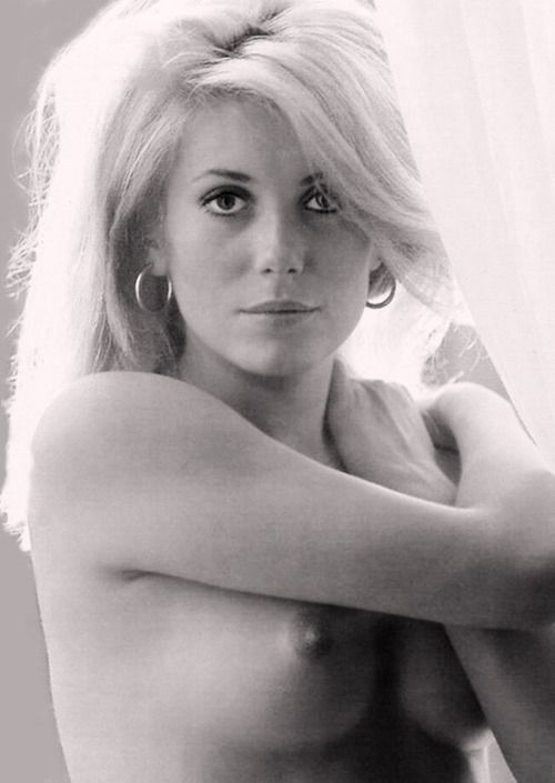 Catherine Deneuve for Playboy (1965)Beautiful Peopleceleb, 70S Pinup, Celebrities Hot, Famous People, Catherine Deneuve, Caterine Deneuve, Beautiful Women, Style Icons, Catherine Zeta-Jon