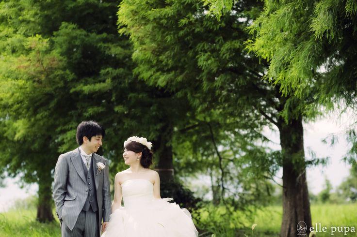 真夏の琵琶湖前撮り* |*elle pupa blog*