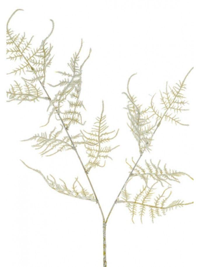 Harmony Asparagus Spray - Ivory