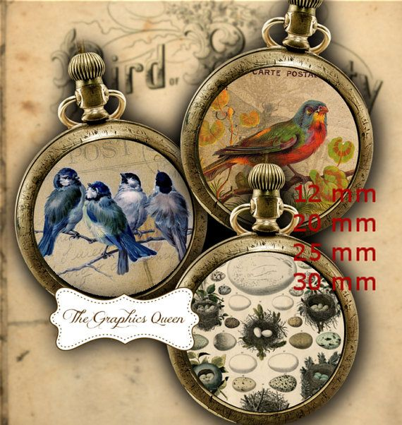 12 mm and 25 mm 1 inch Vintage Birds Digital Collage Sheet