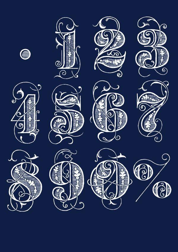 Typography by Bobby Haiqalsyah