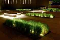 The lighting design for the forecourt and gardens also comprises a touch of drama. It is not the paths and circulation zones that define the space, but the urban furniture and landscape elements.