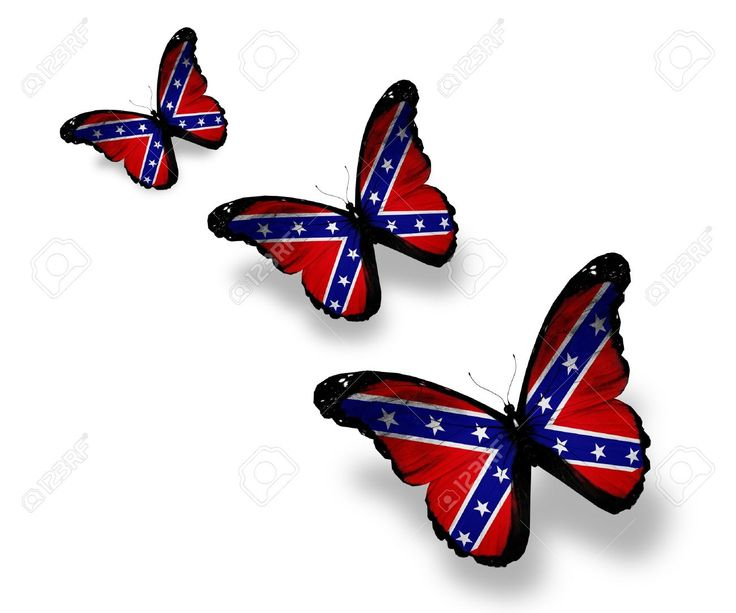 Confederate butterfly - Google Search