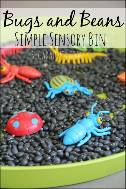 B is for Beans and Bugs sensory bin. Sensory bin ideas with simple items. Alphabet learning bins.