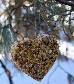 BIRDFEEDER:  3 cups birdseed  2 – 1/4 ounce unflavored gelatin packet  cookie cutters  twine  INSTRUCTIONS:  http://alphamom.com/family-fun/crafts/heart-shaped-bird-feeder-diy/