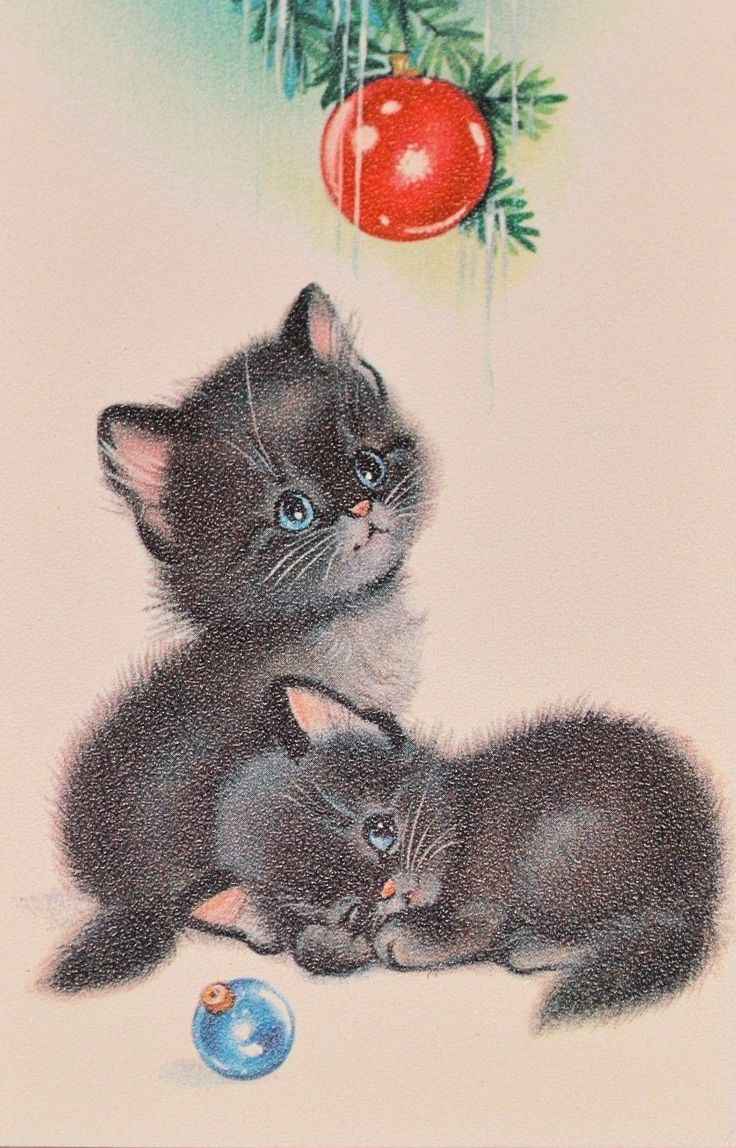 769 Best Vintage Christmas Cats Images On Pinterest Christmas Cats