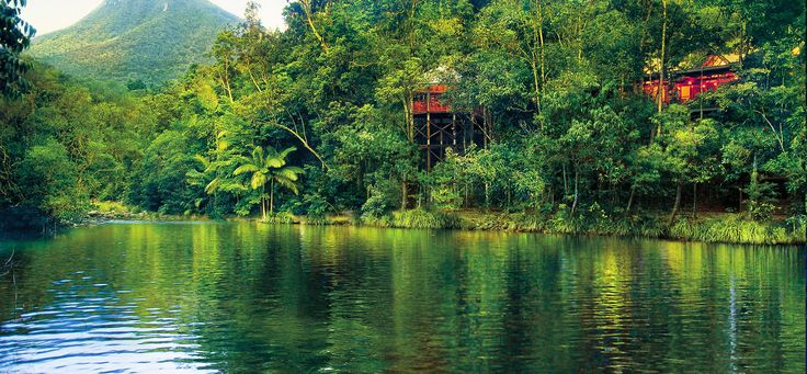 Silky Oaks Lodge // Silky Oaks Lodge is spectacularly located in the Mossman River gorge, adjoining one of the oldest living rainforests on the planet, The Daintree, and overlooks a pristine billabong.