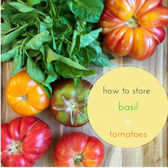 how to store basil and tomatoes - Marin Mama Cooks