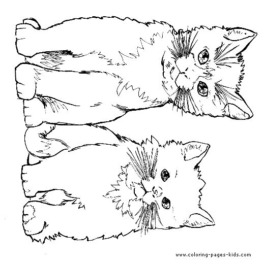 Two Cute Cats Color Page Animal Coloring Pages For Kids Thousands Of Free Printable