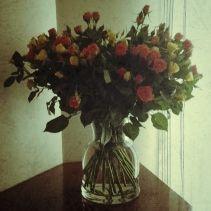 #roses #yellow&orange #vintage