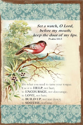 Little Birdie Blessings: Scripture Thursday ~ Guard My Mouth: God Will, The Doors, Blessed Birdies, Scriptures Quotes, Psalms 1413, Prayer Boxes, Mouths, Bible Ver, Psalms 141 3