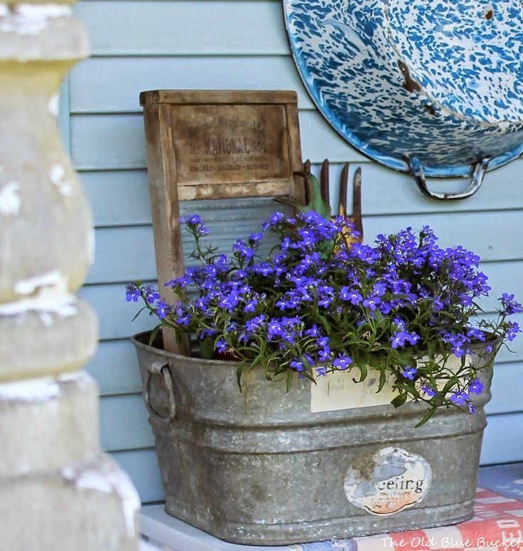 The old blue bucket thinking outside the pot unique - Unusual planters for outdoors ...