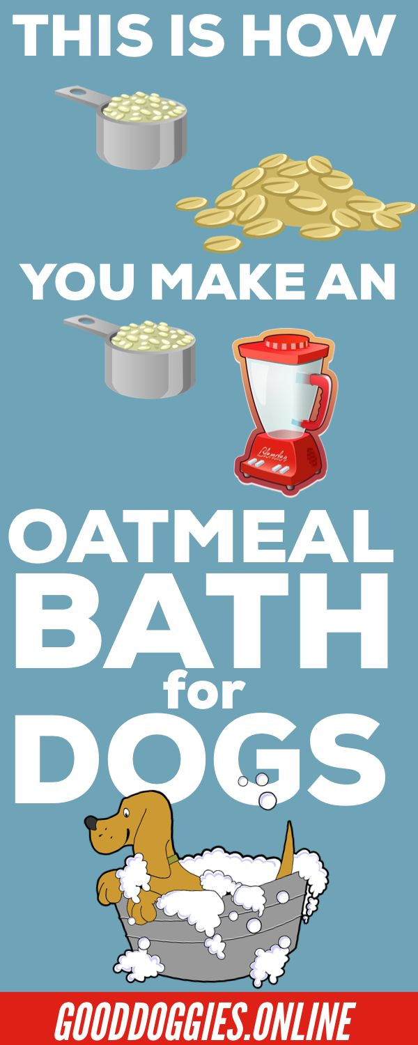 If your dog is suffering from dry skin, giving him an oatmeal bath is effective in reducing the discomfort. Here's how to make an oatmeal bath for dogs. #BackDiscomfortTips