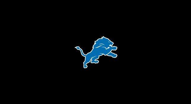 Detroit Lions 8' Pool Table Cloth