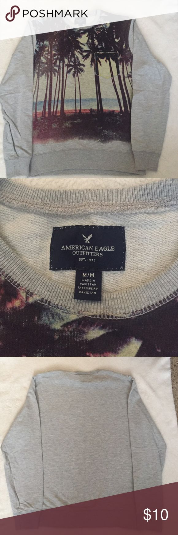 Men's American Eagle sweatshirt Beach scene sweatshirt.  Pocket.  Smoke free/pet free home American Eagle Outfitters Sweaters Crewneck
